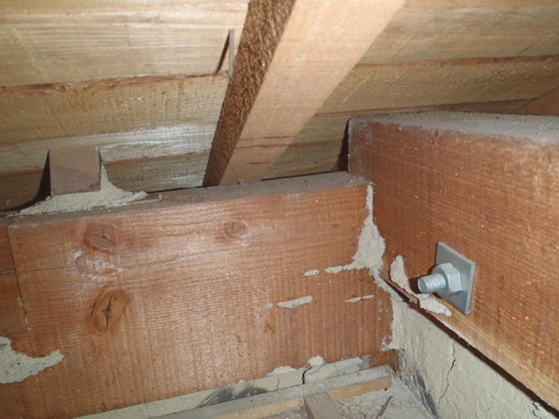 イエシロアリの1F 天井裏の被害写真