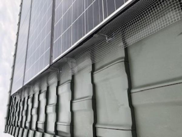 太陽光のパネル下のハトフェンス設置工事です。